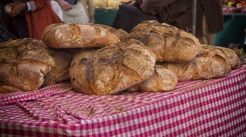 bread-546589_1920