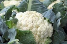 cauliflower-1465732_1280