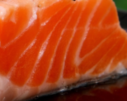 pavé saumon.png