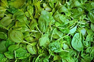 spinach-1522283_1280.jpg