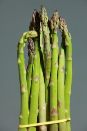 green-asparagus-1331460_640