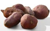 sweetpotato-1975990_640