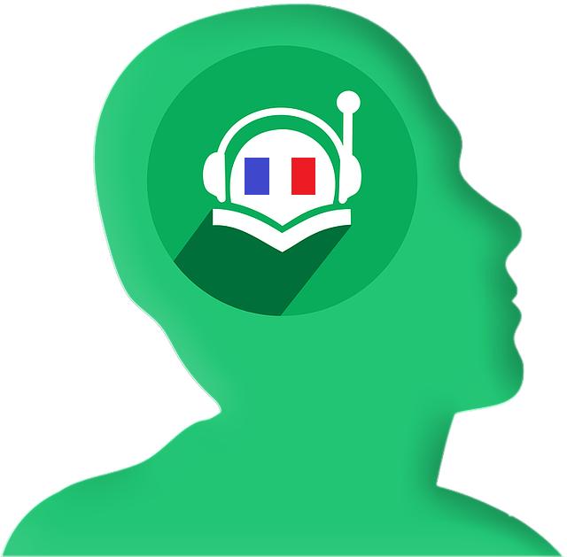 logo français.png