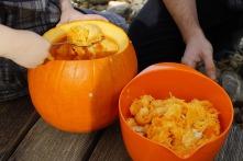 pumpkin-1004950_640.jpg